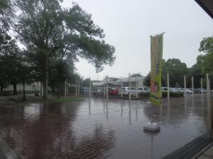 激しく降り注ぐ雨(つくば市松代、8月3日午後3時)