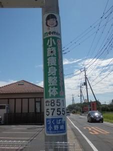 現住所欄が青色なので、NTTの電柱